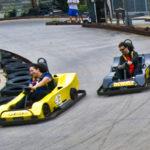 Fast adult go-karts