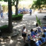 Shaded Picnic area for 200+ guests